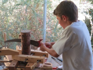 Young bird advocate creates a woodpecker cavity to promote dead trees